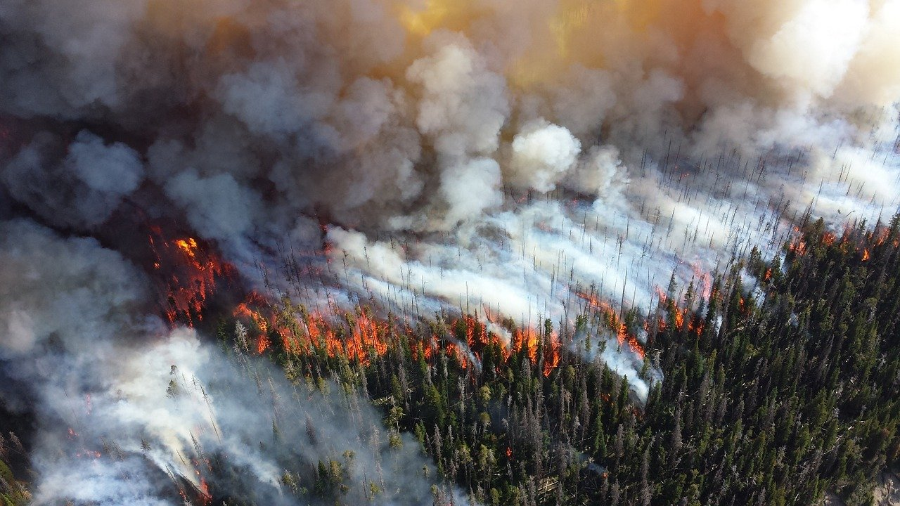 aerial firefighting helicopters